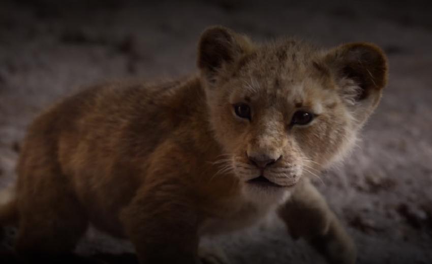 عنوان اصلی شیر شاه