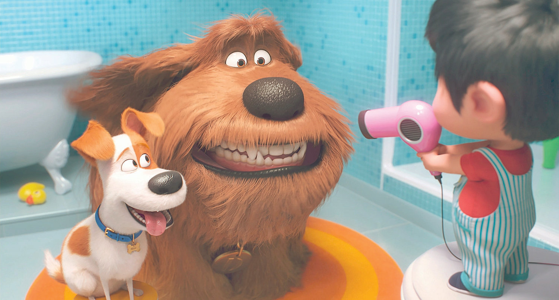 نقد انیمیشن Secret Life Of Pets 2