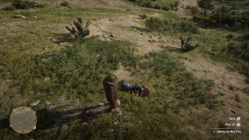 شکار در Red Dead Redemption 2