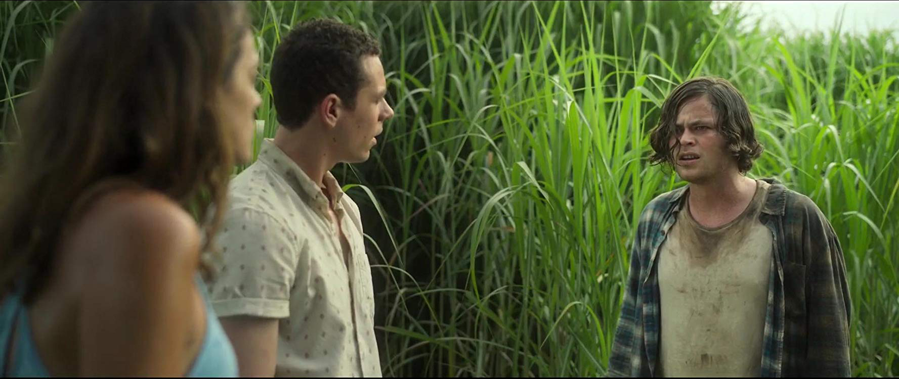 نقد فیلم In The Tall Grass