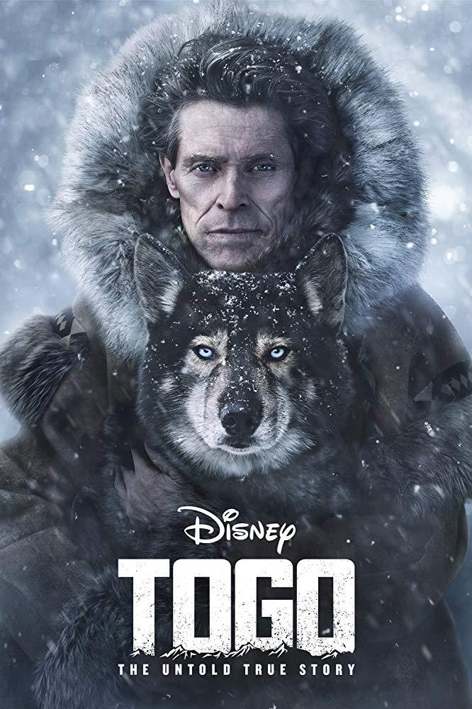 نقد فیلم Togo