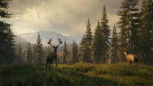 با بازی theHunter: Call of the Wild به آرامش گمشده زندگیتان برسید