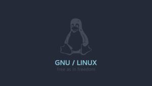 چطور روی گنو/لینوکس بازی کنیم ؟