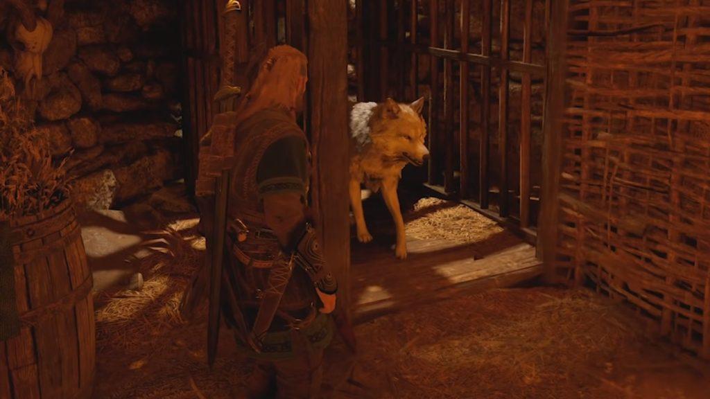 راهنمای آنلاک کردن گرگ در Assassin's Creed Valhalla - ازاد کردن گرگ